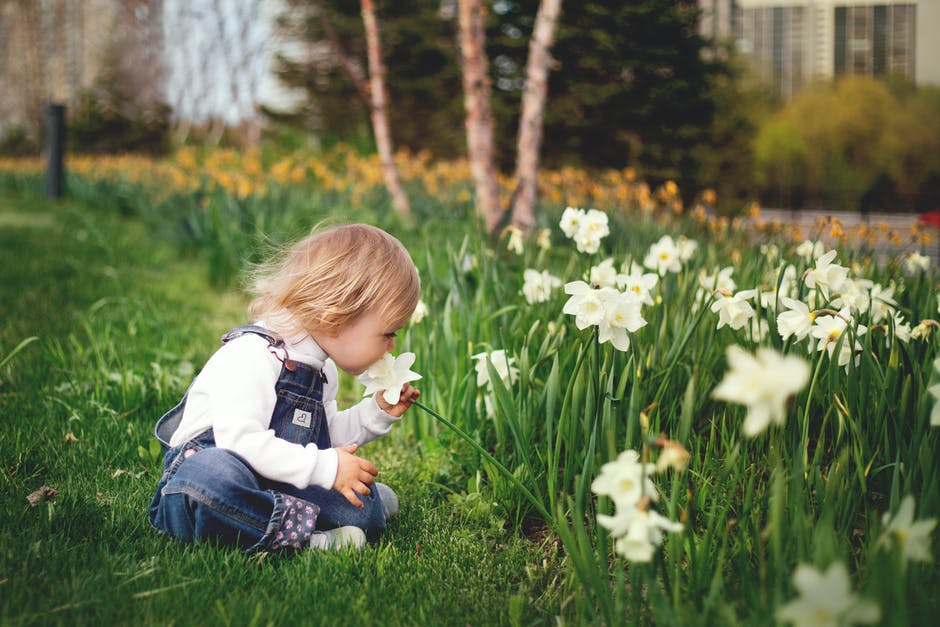 A little girl that is sitting in the grass